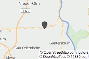 Auf Stadtplan Friesenheim, Rheinhessen anzeigen