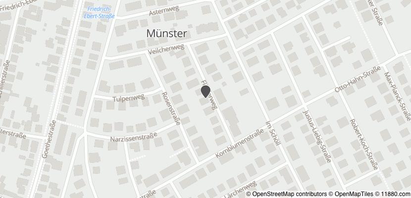 Auf Stadtplan Münster bei Dieburg anzeigen