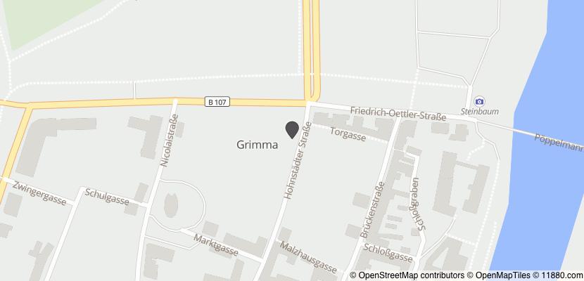 Auf Stadtplan Grimma anzeigen
